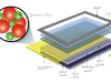 QDEF - Quantum dot Enhanced Film